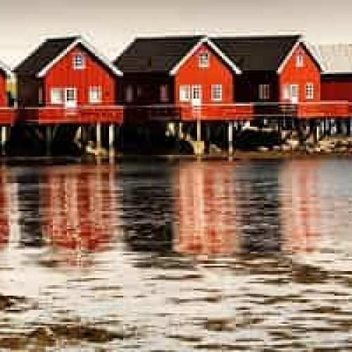 Båt RIB – Flytur på Trondheimsfjorden