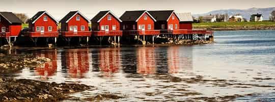 Båt RIB - Flytur på Trondheimsfjorden