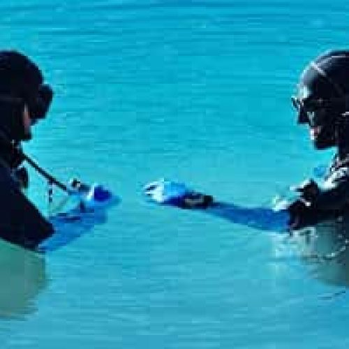 Dykking – fridykking